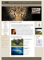 A website catering for visitors to the Kruger National Park and Mozambique. The website serves as a portal for searching accommodations and activities in Mpumalanga and  Mozambique.